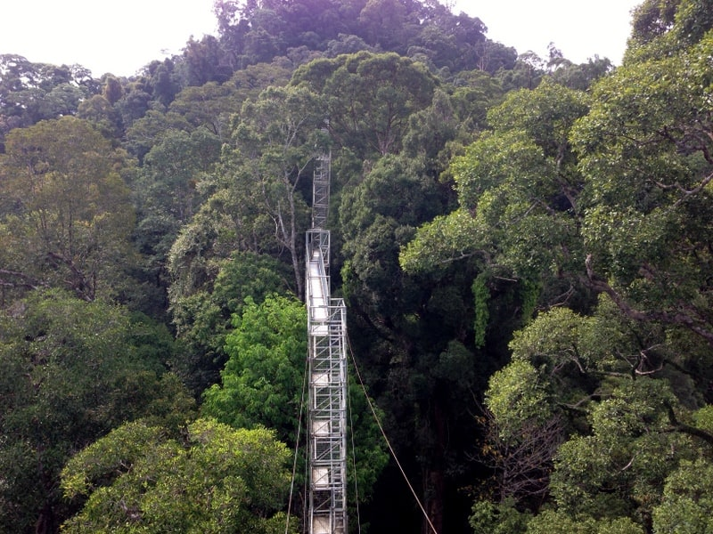 Ulu Temburong National Park borneo what to do