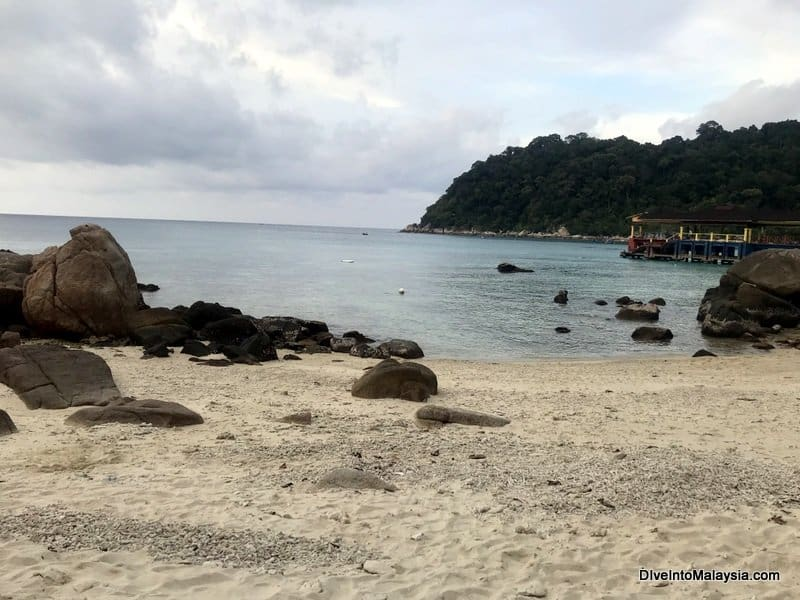 Part of the area where you can snorkel outside Coral View Resort next to the Perhentian Island Resort jetty