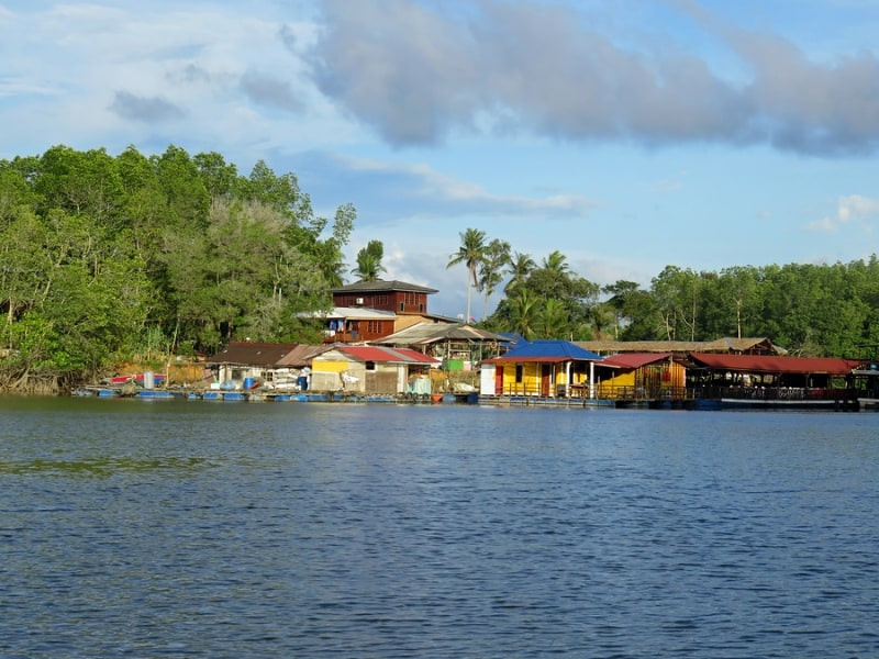 Sungai Lebam River Cruise views during the day desaru